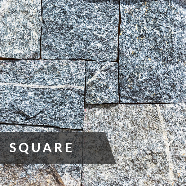 north-shore-collection-square